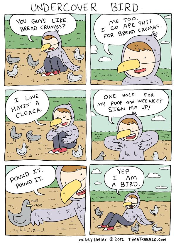 Undercover Bird