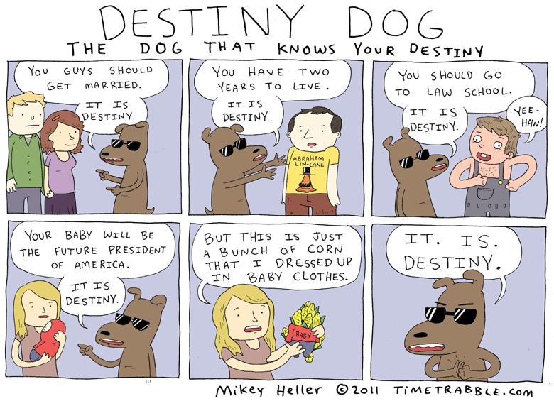 Destiny Dog