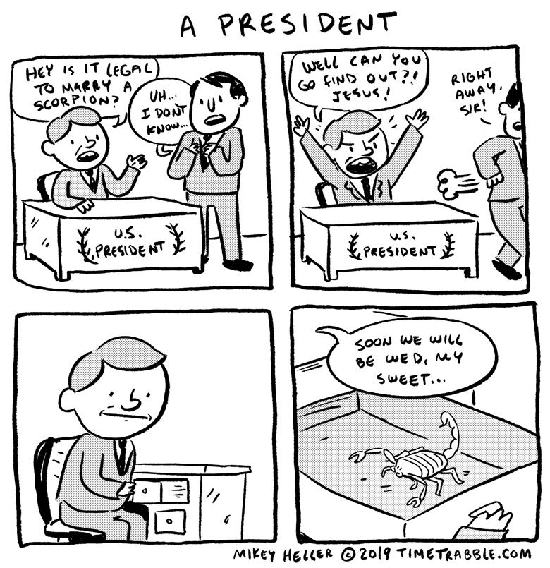 A President